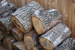 897692_firewood_5.jpg