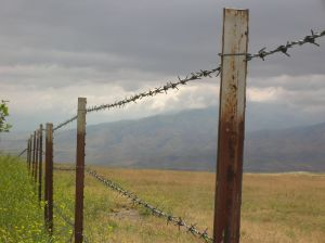barbed-wire-on-a-stormy-day-1117143-m.jpg