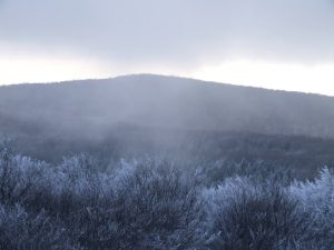 mountain-haze-1130128-m.jpg