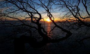sunrise-963348-m.jpg